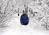 January 1st., Winter Wonderland : Photos around the neighbourhood......January 1, 2008.